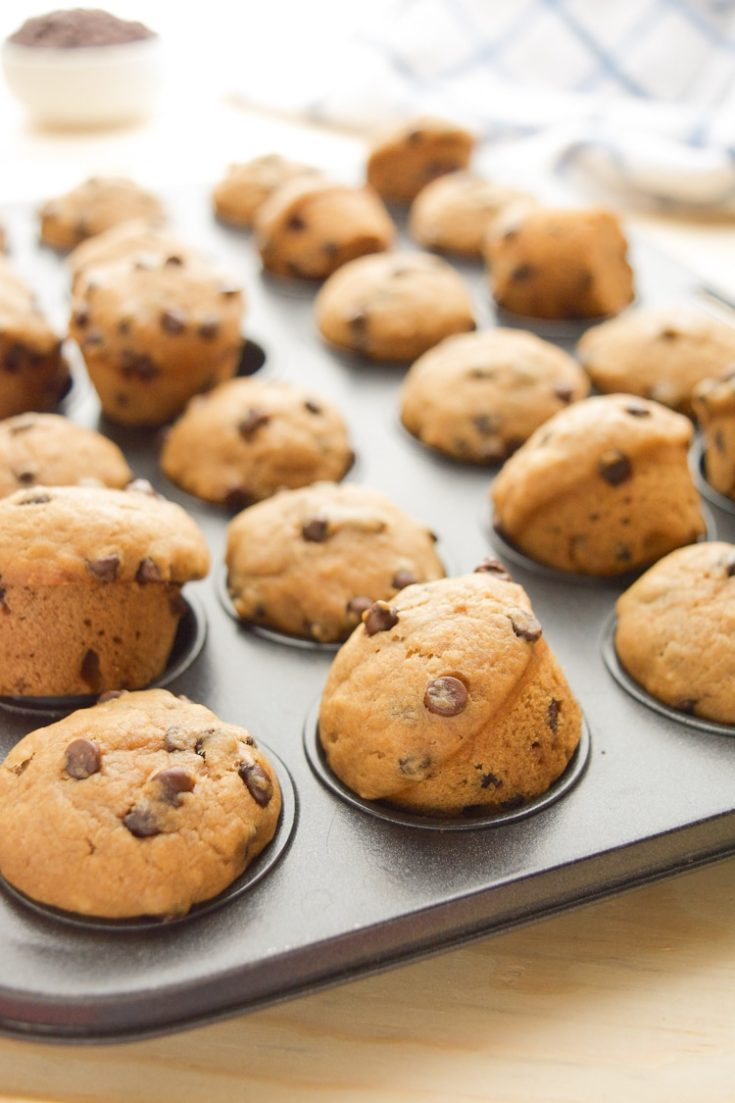Chocolate Chip Mini Muffins (vegan)