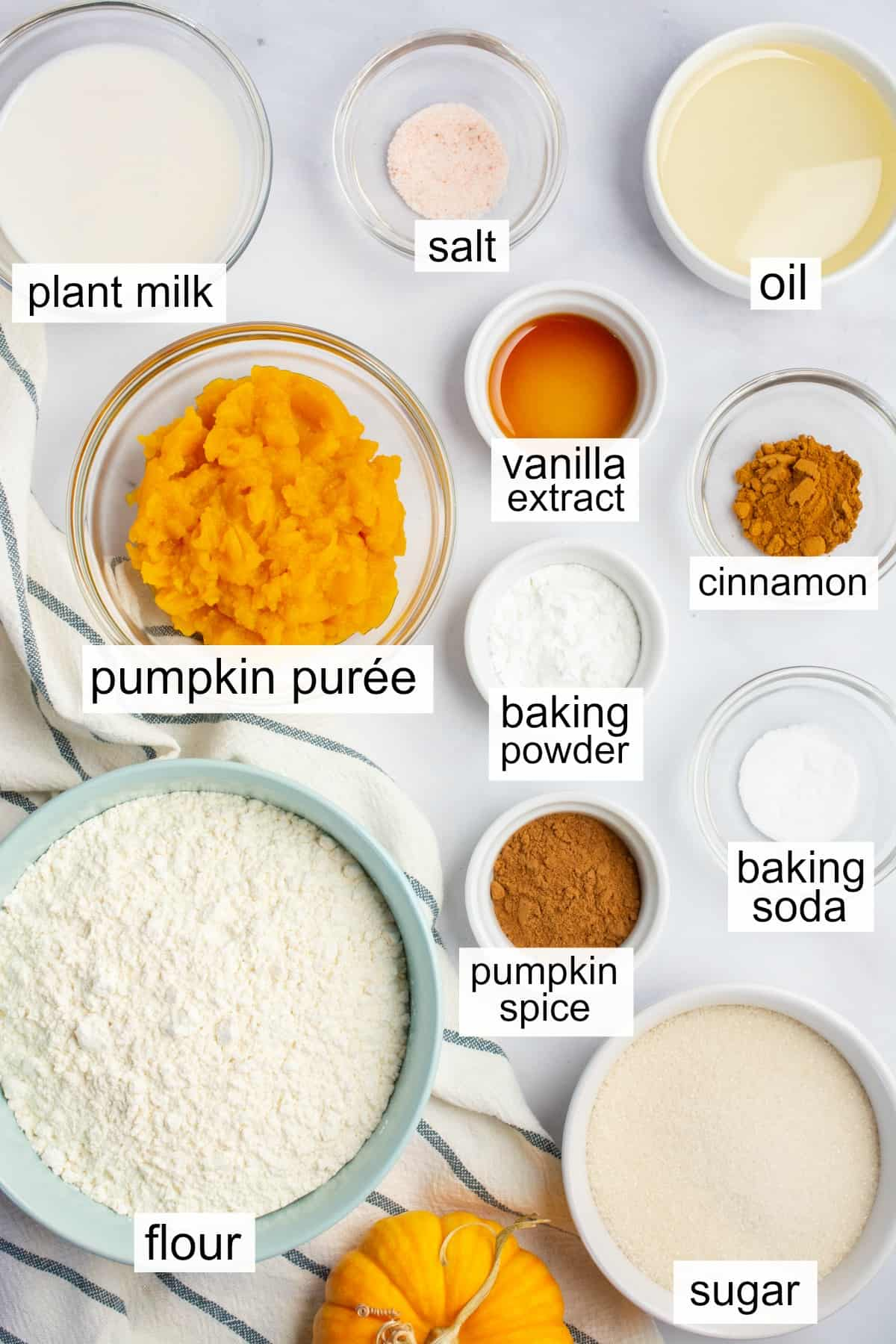 Labeled ingredients to make vegan pumpkin cake.